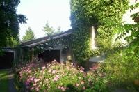 Bild Hauseinfahrt als 'grüne Oase'